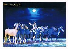 Show Apassionata Pferdepostkarte Neu 2017