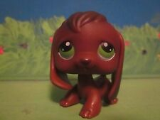 Littlest Pet Shop LPS #77 Green Eyes Beagle Dog Chocolate Brown Puppy