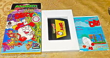 The Fantastic Adventures of Dizzy Nintendo NES Aladdin COMPLETE IN BOX.