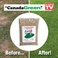 Canada Green Grass Seed - 2 lb. Bag, by Collections Etc