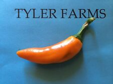15+ Bulgarian Carrot Pepper Seeds (hot organic chili, chile) Great for salsa