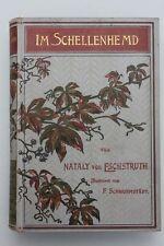 Nataly von Eschstruth - Im Schellenhemd. Illustrationen v. F.Schwormstädt.