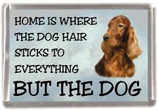 "Irish Setter Dog Fridge Magnet ""Home is Where"" Design by Starprint"