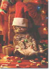 Cat with Stocking on Head 10 Funny Cat Boxed Christmas Cards by Avanti Press