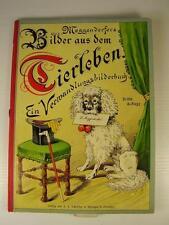Antikes Meggendorfers Tierleben Verwandlungsbilderbuch vor 1945