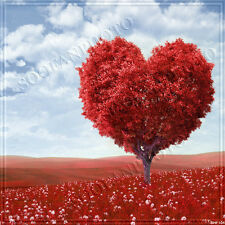 Valentine's Day 10'x10' Computer-painted Scenic Photo Background Backdrop BHF104
