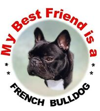 2 French Bulldog Car Stickers No 2 - Starprint