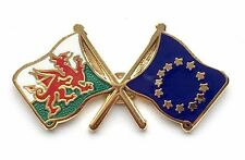 Wales & EU European Union Flags Friendship Courtesy Enamel Lapel Pin Badge