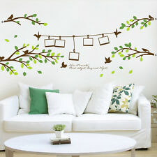 Huge Removable Photo Frame Tree Birds Words Art Mural Wall Vinyl Sticker Decal