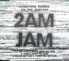 2am Jam Born and Raised (In the Ghetto) 5 Mixes CD Single