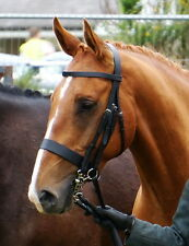 """FSS German Traditional English Working Hunter Show Hunt DOUBLE Bridle Wide 3/4"""""""