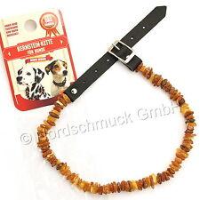 Bernsteinkette Hund Bernstein roh Hundekette Halsband amber dog cognac 36-44cm M