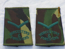 Rangschlaufen: Lance Corporal ,Worcesters & Foresters, DPM