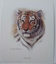 Charles Frace, BENGAL TIGER Head Print