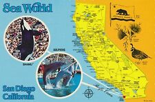 Sea World, Shamu, San Diego, California vintage postcard 1980s, dolphins, bear