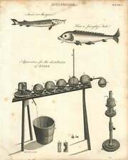1802  Apparatus For The Distillation Of Acids Copperplate