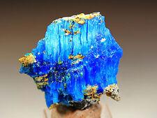 """1.55"""" Natural Blue Chalcanthite on Matrix, Planet Mine, Arizona! CHA336"""