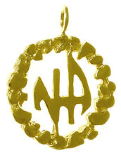 Narcotics Anonymous #372-11, Med Size,14k, NA Initials in a Nugget Style Circle