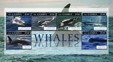 Whale Stamp Sheet (Killer/Blue/Sperm/Humpba ck) 2012 Gambia / Sea Marine Life #12