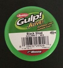 New BERKLEY GULP! ALIVE! 1 inch Black shad Minnows SGAJMI1CS 2.1 OZ. JAR Crappie