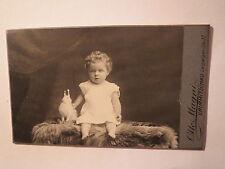 Crimmitschau - sitzendes kleines Kind mit Spielzeug ? Hase - Portrait / CDV
