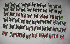 Lot of 68 Multicolored Butterfly Fridge / Screen Magnets Metal & Enamel