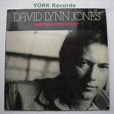 DAVID LYNN JONES - Hard Times On Easy Street - Ex LP Record Mercury 832 518-1