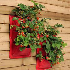 4 x 3 Pocket Burgon & Ball Strawberry Verti-Plant Vertical Garden Wall Planters