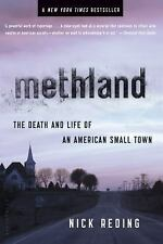 Methland: The Death and Life of an American Small Town, Nick Reding, Good Book