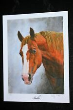 """Horse Head Giclee (entitled """"Bella"""") by Cindy Sutter, signed & numbered prints"""