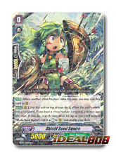 Cardfight Vanguard  x 4 Shield Seed Squire - BT05/026EN - R Mint