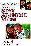 SO YOU WANT TO BE A STAY-AT-HOME-MOM by Cheryl Gochnauer book pb Like New school