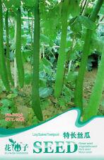 10 Semillas de Luffa Semillas de largo paquete Original Toalla Calabaza Esponja Pepino orgánica B046