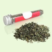 40ml Fresh Organic Dried Catnip Nepeta cataria Leaf & Flower Herb Cat Mint Toy