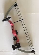 BEAR BRAVE III 3 COMPOUND RH RIGHT ARCHERY BOW GIRLS PINK ARROW HOLDER WHISKERS