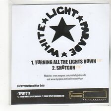 (FO29) White Light Parade, Turning All The Lights Down - 2008 DJ CD