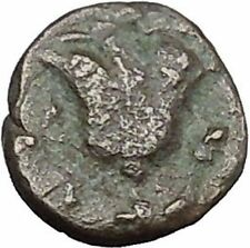 RHODES Island Off CARIA 394BC Nymph Rhodos ROSE Ancient Greek Coin i49609