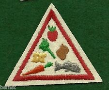 VINTAGE GIRL SCOUT - BROWNIE TRY-IT TRY-ITS - RED - GOOD FOOD - EAT RIGHT