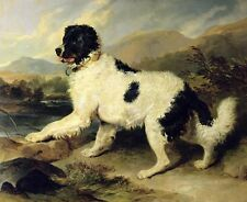 Exquisite Oil painting Long-haired dogs puppy in sunset landscape by stream art
