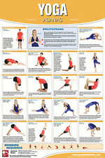 YOGA ASANAS Professional Fitness Health Club Gym Wall Chart POSTER