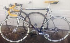 Daccordi 50th Anniv Columbus SLX Ben Lawee Personal 60cm Racing Bike historic