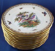 Rare Set 10 Richard Klemm Dresden Porcelain Bird Paradise Plate Porzellan Teller