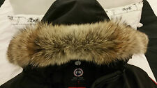 "2017 ""LATEST CONCEPT"" RED LABEL BLACK CANADA GOOSE TRILLIUM ""XL"" PARKA JACKET"