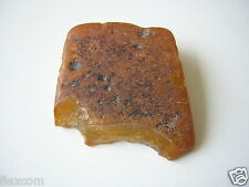Roh Bernstein Genuine Raw Baltic Amber 24,1 g / 5,2 x 4,4 x 1,4 cm