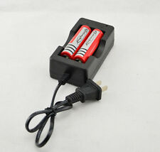 AC 110V 220V Dual Charger For 18650 3.7V Rechargeable Li-Ion Battery US Nice