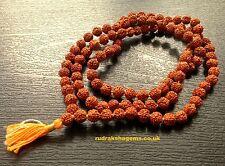 RUDRAKSHA OM RUDRAKSH JAPA MALA ROSARY 108 +1 BEAD YOGA HINDU PRAYER MEDITATION