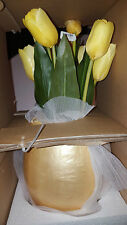 2  Pottery Barn Plop and Drop Easter Egg small   New in box