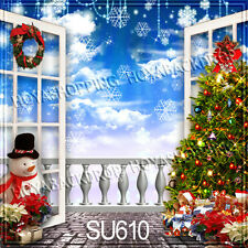 Christmas 10'x10' Computer-painted Indoor Scenic background backdrop SU610B881