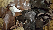 Genuine ostrich leg leather remnants, assorted ostrich leg scraps, REAL LEATHER
