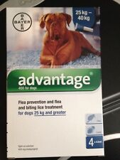 ADVANTAGE blue 2 TUBES dogs over 55 lbs (25-40kg) kills fleas and lice!